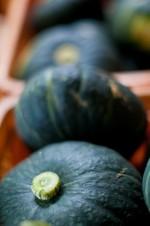 かぼちゃのカロリーや効能は?薬膳効果や種にも栄養がある?