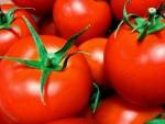 美味しいトマトの選び方!色やヘタ、重みで簡単に分かる見分け方